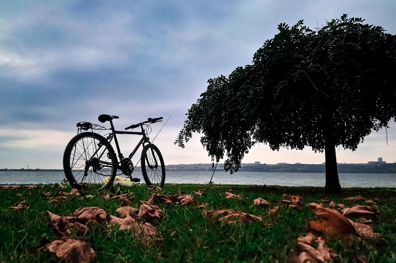 bicycle, travel, nature